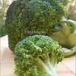 Recipe |Quick Broccoli stir-fry
