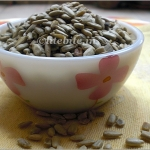 Make Way for Sunflower Seeds