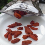Wonder Food Goji Berries and A Smoothie Recipe