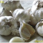 garlic and health benefits