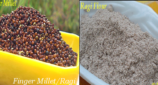 Finger millet or Ragi